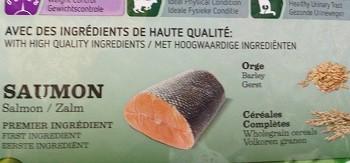 SALMON=鮭